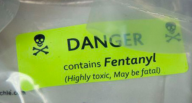 Fentanyl now America's deadliest drug – USA Today